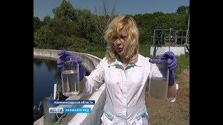 В Светлогорске обсуждают современные технологии очистки сточных вод