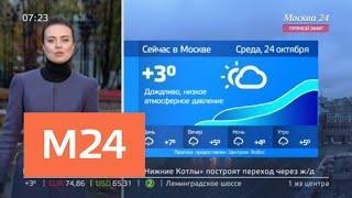 """""""Утро"""": пасмурная погода ожидается в столице 24 октября - Москва 24"""