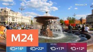 В Москве в воскресенье установится летняя погода - Москва 24