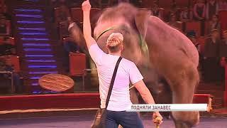 Артисты цирка пригласили детей на открытую репетицию