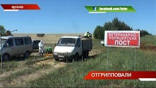 В Татарстане указом Президента отменили карантин   ТНВ