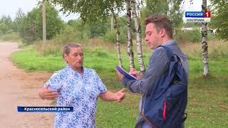 Жителям деревни Харитоново в Костромской области не дают покоя незваные рогатые гости