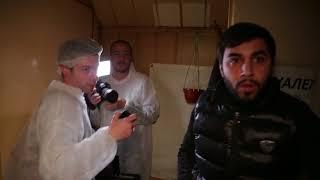 На «Ревизорро» напали во время съемок в Нижнем Новгороде