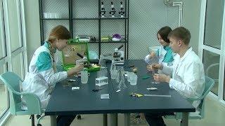 В Башкирии начнут выпускать образовательные сертификаты