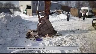 В регионе уничтожили более тонны запрещенных к ввозу на территорию РФ овощей и фруктов