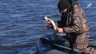 Прошло заседание областного рыбохозяйственного совета на тему ловли рыбы в период нереста