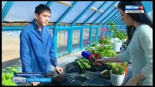Дети в поселке Кирпичного завода получают первые аграрные навыки прямо на территории школы