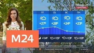 """""""Утро"""": жаркая погода вернулась в столичный регион - Москва 24"""