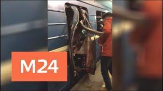 Следствие о теракте в метро Санкт-Петербурга почти завершено - Москва 24