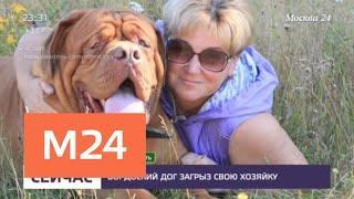 Крупная собака насмерть загрызла свою хозяйку - Москва 24