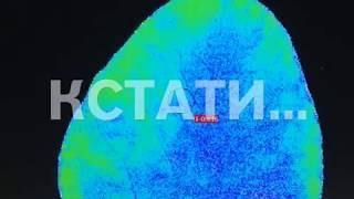 Уникальный метод диагностики растений разработали нижегородские ученые