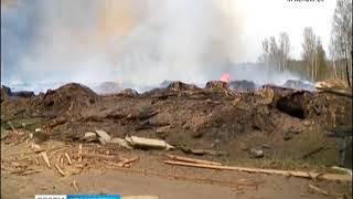 В Канске несколько лесопилок поймали на нарушении правил пожарной безопасности