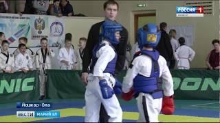 В Йошкар-Оле прошел открытый турнир по тэкэндо