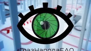 """Настоящее нашествие тараканов сняли на видео соавторы """"ГлазНародаЕАО"""" в Биробиджане"""