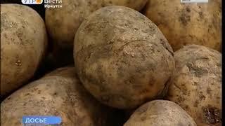 Цены на продукты питания выросли в Иркутской области