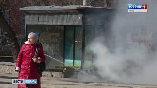 В Перми загорелась урна с мусором