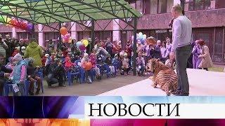 Тысячи волонтеров со всей России обменялись опытом на фестивале в Москве.