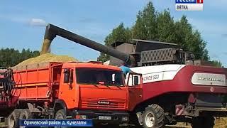 Кировские сельхозпредприятия собрали треть урожая(ГТРК Вятка)