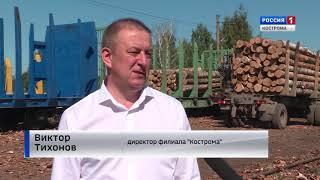 Костромские предприятия все чаще предпочитают для своей деятельности железнодорожные перевозки