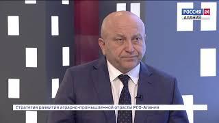 Стратегия. Игорь Кадзаев
