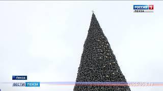 На площади Ленина начали наряжать главную елку Пензы