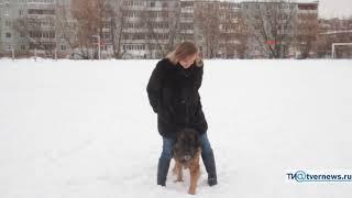 Нина Николаева и её леонбергер Царина