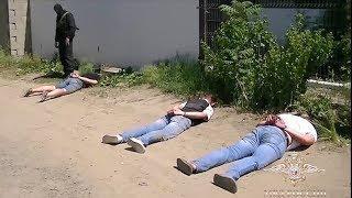 В Волгоградской области сотрудниками полиции пресечена деятельность злоумышленников