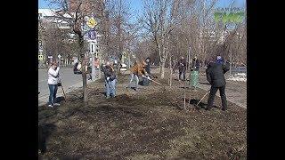 """30 тысяч самарцев вышли на """"Гагаринский"""" субботник"""