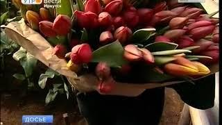 Почти 80 тысяч цветов вырастили агрономы иркутского Горзеленхоза к весенним праздникам
