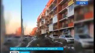 Зарезавшего дикую косулю в Иркутске задержали  Полиция ищет свидетелей происшествия