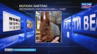 """""""Вести в сети"""". Выпуск #216"""