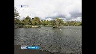 На обустройство Летнего озера в Калининграде выделят 59 млн рублей