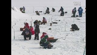 На Красноярском водохранилище прошли соревнования по зимней рыбалке