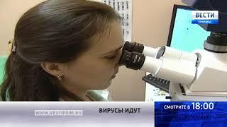 «Вести: Приморье»: Спасает ли квашеная капуста от гриппа?