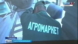 Ставропольские аграрии познакомились с технологиями будущего