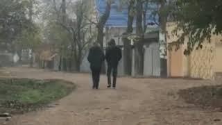 Группа подозрительных молодых людей ищет закладки в Пятигорске