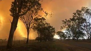 Эвакуация из-за лесных пожаров