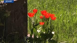 Мемориальными кладбищами займутся в столичной администрации