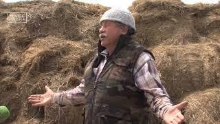 Камчатский депутат пересел с авто на коня