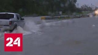 Жертвами урагана Флоренс уже стали 13 человек - Россия 24