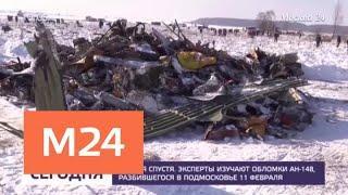 Около пяти тысяч фрагментов разбившегося Ан-148 предстоит изучить экспертам - Москва 24