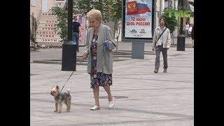 Новая реформа о повышении пенсионного возраста вызвала широкий резонанс в обществе