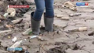 Прямое включение: Почему обмелел Мотовилихинский пруд?