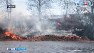В Смоленской области горят леса и торфяники
