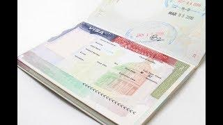 Обмануть и остаться — как работает индустрия фальшивых виз в США