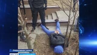 Калининградские полицейские задержали крупного сбытчика амфетамина