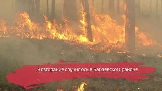 Лесной пожар произошёл в Бабаевском районе