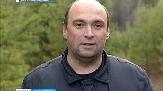 Анонс: в окрестностях Маганска обнаружена нелегальная свалка останков домашнего скота