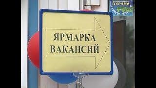 В Куйбышевском районе Самары прошла ярмарка вакансий
