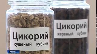 В Ростове запустили единственное в России предприятие по производству растительных экстрактов
